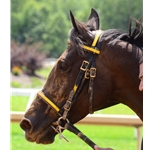 RACING BRIDLE Headstall made from Beta Biothane (ANY 2 Color Combo) English Bridle