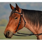 Black AUSTRALIAN BARCOO OUTRIDER AUSSIE BRIDLE made from BETA BIOTHANE
