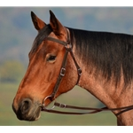 Brown AUSTRALIAN BARCOO OUTRIDER AUSSIE BRIDLE made from BETA BIOTHANE