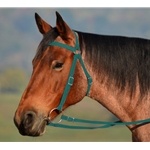 HUNTER GREEN AUSTRALIAN BARCOO OUTRIDER AUSSIE BRIDLE made from BETA BIOTHANE