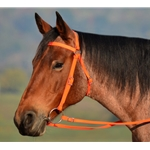 ORANGE AUSTRALIAN BARCOO OUTRIDER AUSSIE BRIDLE made from BETA BIOTHANE