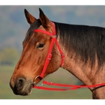 RED AUSTRALIAN BARCOO OUTRIDER AUSSIE BRIDLE made from BETA BIOTHANE