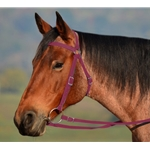 WINE Colored AUSTRALIAN BARCOO OUTRIDER AUSSIE BRIDLE made from BETA BIOTHANE