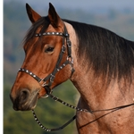black Quick Change HALTER BRIDLE with Snap On Browband made from BETA BIOTHANE (with Jewels Bling Rhinestones)