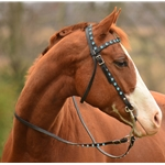 WESTERN BRIDLE (Full Browband) made from BETA BIOTHANE (With BLING)