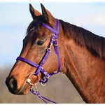 Purple Traditional HALTER BRIDLE with BIT HANGERS made from BETA BIOTHANE