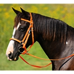 Orange Traditional HALTER BRIDLE with BIT HANGERS made from BETA BIOTHANE