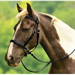 BLACK 2 in 1 BITLESS BRIDLES