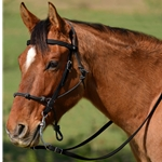 BLACK Snap on Browband WESTERN BRIDLE made from BETA BIOTHANE