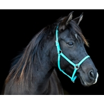 STABLE HALTER & LEAD made from BETA BIOTHANE (Solid Colored)