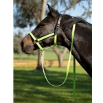 SAFETY HALTER & LEAD with Leather Breakaway Crown made from BETA BIOTHANE (Solid Colored)