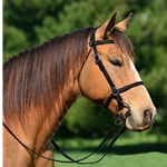 BLACK PICNIC BRIDLE or SIMPLE HALTER BRIDLE made from Beta Biothane