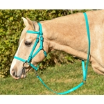 RIDING LEADROPE/LEADLINE made from Beta Biothane (Solid Colored)