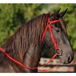AUSTRALIAN BARCOO OUTRIDER AUSSIE BRIDLE made from BETA BIOTHANE