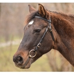 One Size Fits Most WESTERN BRIDLE made from BETA BIOTHANE (Solid Colored)