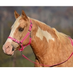 PINK Buckle Nose Halter & Lead Beta Biothane