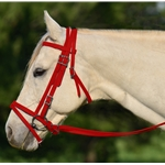 RED ENGLISH BRIDLE with CAVESSON made from BETA BIOTHANE