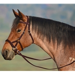 BROWN SIDEPULL Bitless Bridle made from BETA BIOTHANE