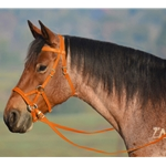 ORANGE SIDEPULL Bitless Bridle made from BETA BIOTHANE