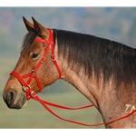 RED SIDEPULL Bitless Bridle made from BETA BIOTHANE