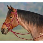 WINE SIDEPULL Bitless Bridle made from BETA BIOTHANE