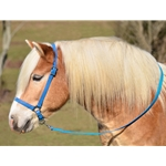 LIGHT BLUE GROOMING HALTER & LEAD made from BETA BIOTHANE