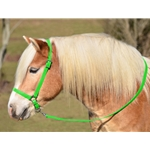 LIME GREEN GROOMING HALTER & LEAD made from BETA BIOTHANE