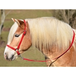 RED GROOMING HALTER & LEAD made from BETA BIOTHANE