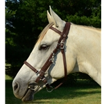 brown Traditional HALTER BRIDLE with BIT HANGERS made from LEATHER