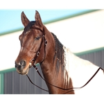 BROWN WESTERN BRIDLE (Full Browband) made from BETA BIOTHANE