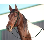 HUNTER GREEN WESTERN BRIDLE (Full Browband) made from BETA BIOTHANE