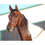 ORANGE WESTERN BRIDLE (Full Browband) made from BETA BIOTHANE