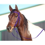 PURPLE WESTERN BRIDLE (Full Browband) made from BETA BIOTHANE