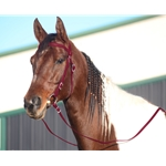 WINE WESTERN BRIDLE (Full Browband) made from BETA BIOTHANE
