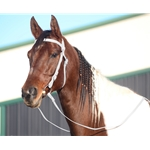 WHITE WESTERN BRIDLE (Full Browband) made from BETA BIOTHANE