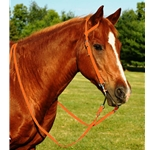 ORANGE WESTERN BRIDLE (One Ear or Two Ear Split Ear Browband) made from BETA BIOTHANE