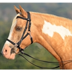 brown (dark, chocolate)  Quick Change HALTER BRIDLE with Snap on Browband made from LEATHER