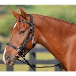 black Quick Change HALTER BRIDLE with Snap on Browband made from LEATHER