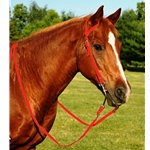 RED WESTERN BRIDLE (One Ear or Two Ear Split Ear Browband) made from BETA BIOTHANE
