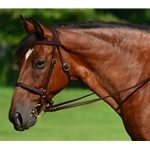 BROWN ENGLISH CONVERT-A-BRIDLE made from BETA BIOTHANE