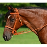 ORANGE ENGLISH CONVERT-A-BRIDLE made from BETA BIOTHANE