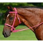 PINK ENGLISH CONVERT-A-BRIDLE made from BETA BIOTHANE