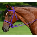 PURPLE ENGLISH CONVERT-A-BRIDLE made from BETA BIOTHANE