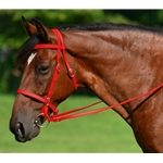 RED ENGLISH CONVERT-A-BRIDLE made from BETA BIOTHANE