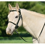 HUNTER GREEN PICNIC BRIDLE or SIMPLE HALTER BRIDLE made from Beta Biothane