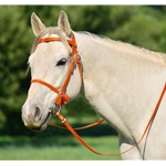 ORANGE PICNIC BRIDLE or SIMPLE HALTER BRIDLE made from Beta Biothane