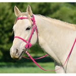 PINK PICNIC BRIDLE or SIMPLE HALTER BRIDLE made from Beta Biothane