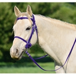 PURPLE PICNIC BRIDLE or SIMPLE HALTER BRIDLE made from Beta Biothane
