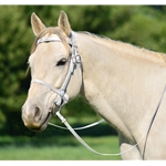 WHITE PICNIC BRIDLE or SIMPLE HALTER BRIDLE made from Beta Biothane