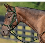 HUNTER GREEN Quick Change HALTER BRIDLE with Snap on Browband made from BETA BIOTHANE